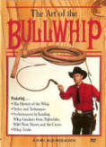 Art of the Bullwhip